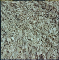Westvaco Woodchips