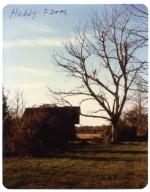 Heady Farm