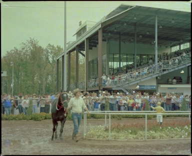 Grandstand at Bluegrass Downs
