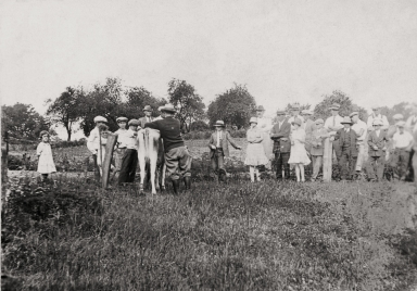 4 H cow program, William C Johnstone kneeling