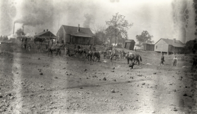 Mule teams behind old Paducah Tilghman school building