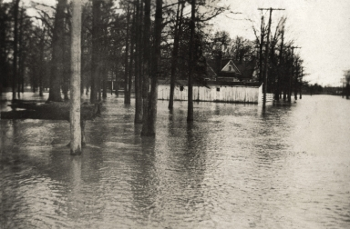 Water covers street, yard in Paducah (KY) during April 1913 flood
