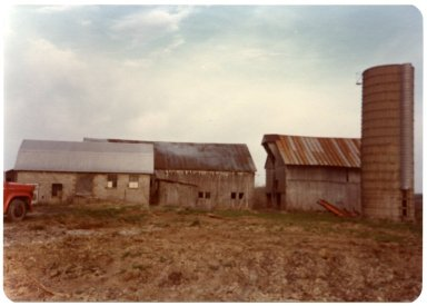 Barns on the John H. Dowdy Farm