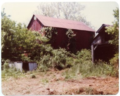 Barns on the Fred Sisk Farm