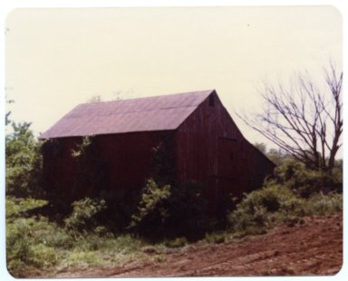 Red Barn on Fred Sisk Farm