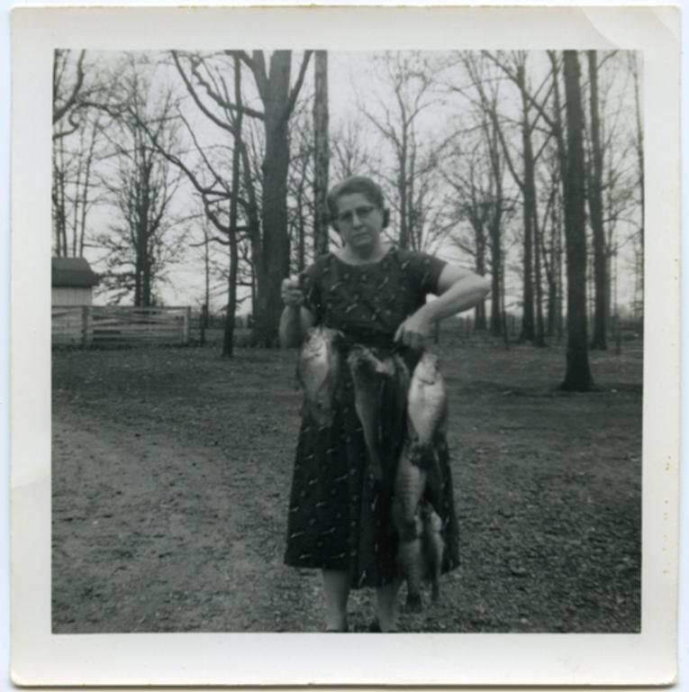 Maud's Catch