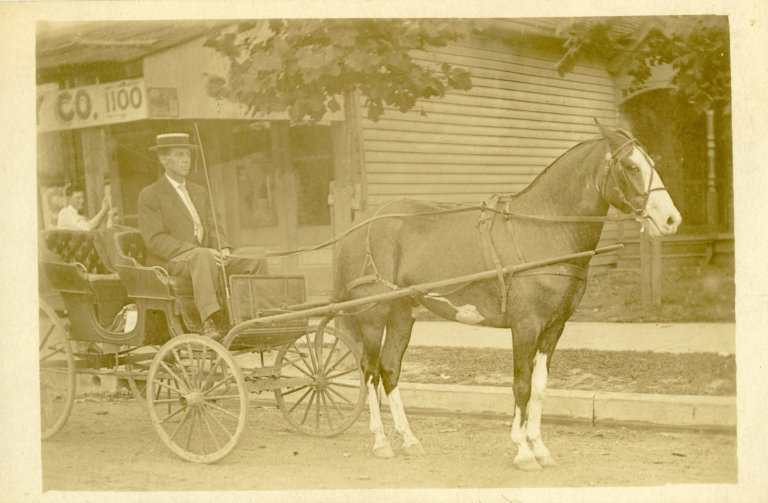 Man in Horse-Drawn Buggy