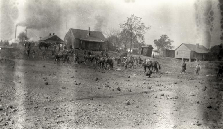 Mule teams behind old Paducah Tilghman school building