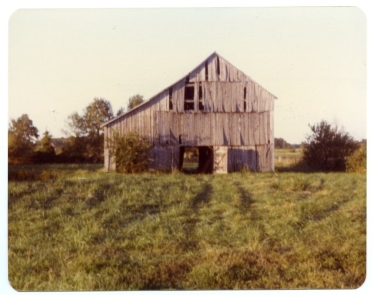 Barn on Pat Harris Farm