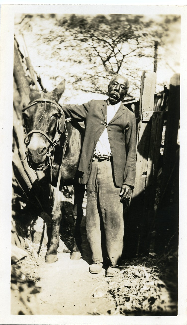 Tom Wall Holdin' the Mule