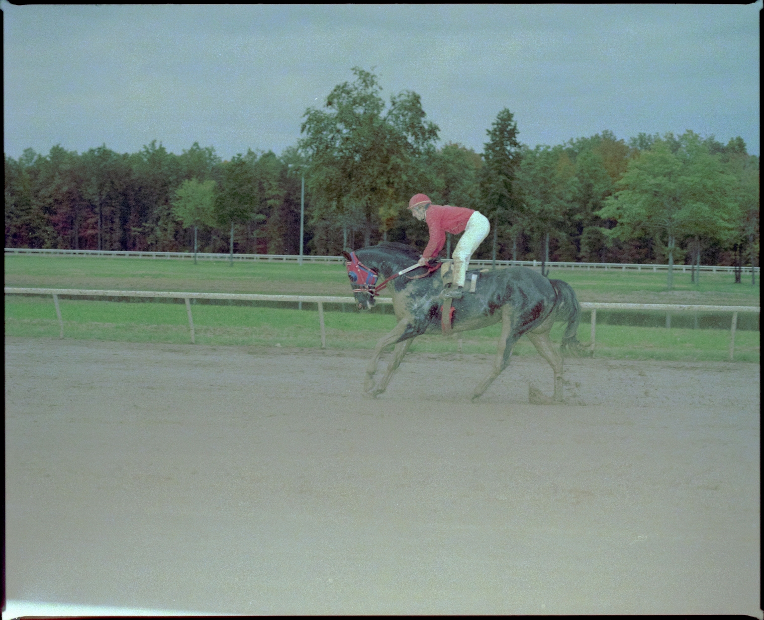 On the Track at Bluegrass Downs