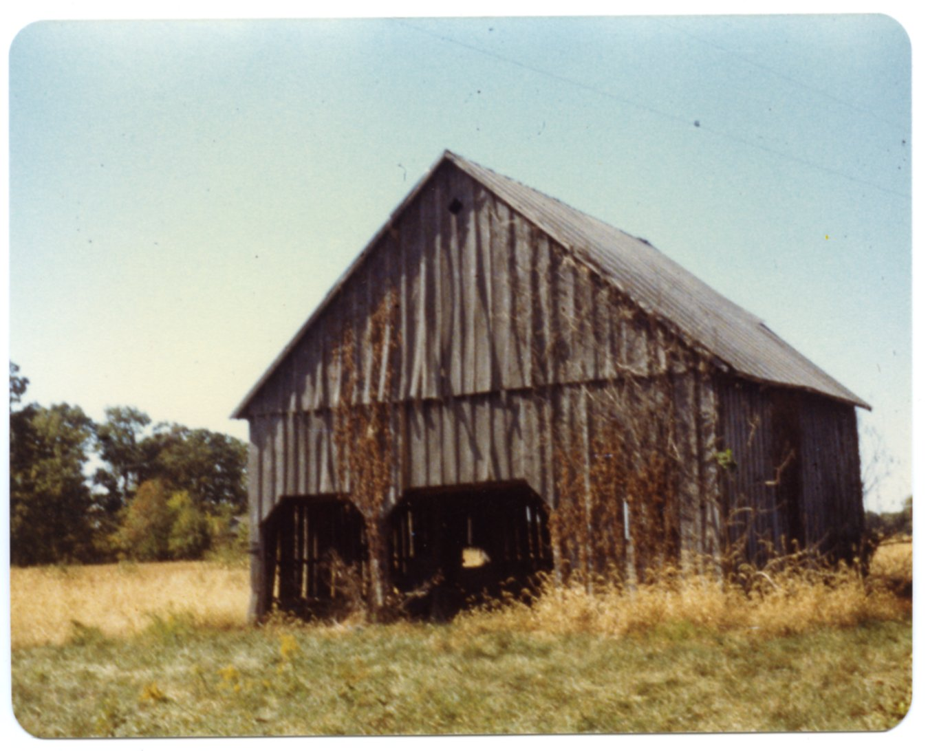 Barn on Guy Throgmorton Farm